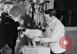 Image of beauty treatments for dogs Portland Oregon USA, 1931, second 43 stock footage video 65675070930