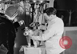 Image of beauty treatments for dogs Portland Oregon USA, 1931, second 45 stock footage video 65675070930