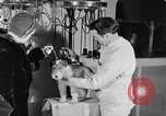 Image of beauty treatments for dogs Portland Oregon USA, 1931, second 46 stock footage video 65675070930