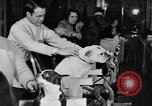 Image of beauty treatments for dogs Portland Oregon USA, 1931, second 62 stock footage video 65675070930