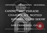 Image of Golden Gate Kennel Club dog show San Francisco California USA, 1932, second 2 stock footage video 65675070937