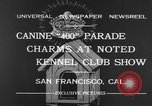 Image of Golden Gate Kennel Club dog show San Francisco California USA, 1932, second 4 stock footage video 65675070937