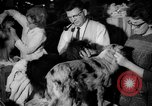 Image of Westminster Kennel Club dog show New York United States USA, 1965, second 20 stock footage video 65675070999