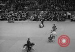 Image of Westminster Kennel Club dog show New York United States USA, 1965, second 55 stock footage video 65675070999