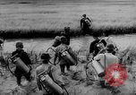 Image of Natural resources of South Vietnam South East Asia, 1960, second 5 stock footage video 65675071034