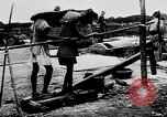 Image of Natural resources of South Vietnam South East Asia, 1960, second 24 stock footage video 65675071034
