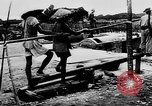 Image of Natural resources of South Vietnam South East Asia, 1960, second 25 stock footage video 65675071034