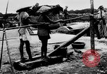 Image of Natural resources of South Vietnam South East Asia, 1960, second 26 stock footage video 65675071034
