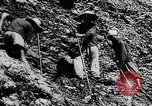 Image of Natural resources of South Vietnam South East Asia, 1960, second 46 stock footage video 65675071034