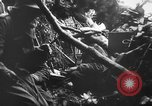 Image of German infantry Nettuno Italy, 1944, second 46 stock footage video 65675071081