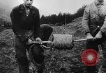 Image of German troops Europe, 1944, second 28 stock footage video 65675071084