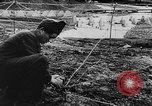 Image of German troops Europe, 1944, second 38 stock footage video 65675071084
