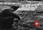 Image of German troops Europe, 1944, second 40 stock footage video 65675071084