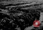 Image of Allied troops France, 1917, second 59 stock footage video 65675071100