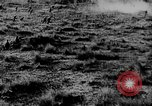 Image of Allied troops France, 1917, second 47 stock footage video 65675071102