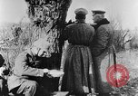Image of Epoch of Turnips Germany, 1916, second 7 stock footage video 65675071215