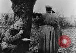 Image of Epoch of Turnips Germany, 1916, second 21 stock footage video 65675071215