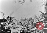 Image of German attack in France France, 1916, second 57 stock footage video 65675071216