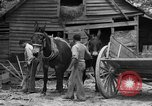 Image of Negro farmers United States USA, 1931, second 11 stock footage video 65675071224