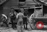 Image of Negro farmers United States USA, 1931, second 14 stock footage video 65675071224