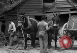 Image of Negro farmers United States USA, 1931, second 17 stock footage video 65675071224