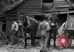 Image of Negro farmers United States USA, 1931, second 18 stock footage video 65675071224