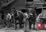 Image of Negro farmers United States USA, 1931, second 19 stock footage video 65675071224