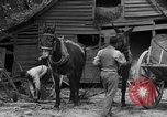 Image of Negro farmers United States USA, 1931, second 20 stock footage video 65675071224