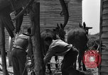 Image of Negro farmers United States USA, 1931, second 33 stock footage video 65675071224