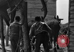 Image of Negro farmers United States USA, 1931, second 34 stock footage video 65675071224