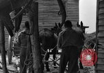 Image of Negro farmers United States USA, 1931, second 35 stock footage video 65675071224