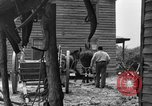 Image of Negro farmers United States USA, 1931, second 45 stock footage video 65675071224