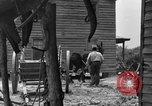 Image of Negro farmers United States USA, 1931, second 46 stock footage video 65675071224