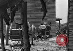 Image of Negro farmers United States USA, 1931, second 48 stock footage video 65675071224