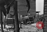 Image of Negro farmers United States USA, 1931, second 49 stock footage video 65675071224