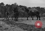 Image of Negro farmers United States USA, 1931, second 62 stock footage video 65675071224