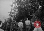 Image of Japanese troops Singapore, 1942, second 20 stock footage video 65675071243