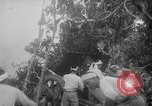 Image of Japanese troops Singapore, 1942, second 21 stock footage video 65675071243