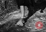 Image of evacuation Italy, 1944, second 20 stock footage video 65675071246