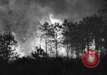 Image of forest fire New Jersey United States USA, 1944, second 5 stock footage video 65675071254