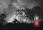 Image of forest fire New Jersey United States USA, 1944, second 6 stock footage video 65675071254