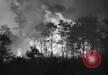 Image of forest fire New Jersey United States USA, 1944, second 8 stock footage video 65675071254