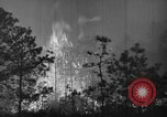 Image of forest fire New Jersey United States USA, 1944, second 24 stock footage video 65675071254