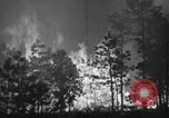 Image of forest fire New Jersey United States USA, 1944, second 32 stock footage video 65675071254