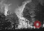 Image of forest fire New Jersey United States USA, 1944, second 33 stock footage video 65675071254