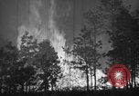 Image of forest fire New Jersey United States USA, 1944, second 34 stock footage video 65675071254