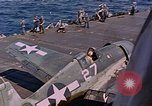 Image of US Navy Squadron VF-16 aboard USS Lexington (CV-16) Pacific Ocean, 1944, second 16 stock footage video 65675071281