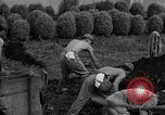 Image of Japanese prisoners of war Mukden Manchuria, 1945, second 35 stock footage video 65675071283