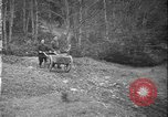 Image of Maquis guerrillas France, 1944, second 21 stock footage video 65675071369