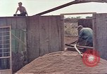 Image of Seabees Pacific Theater, 1945, second 3 stock footage video 65675071382